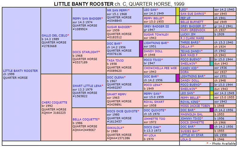 Pedigree LITTLE BANTY ROOSTER