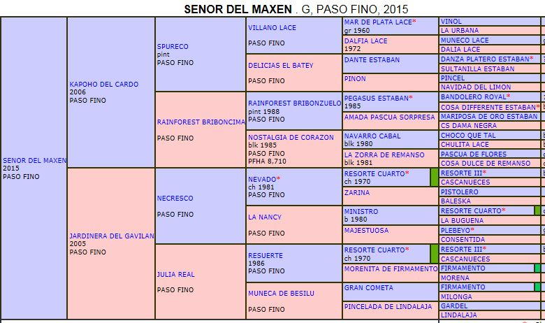 Pedigree Senor del Maxen